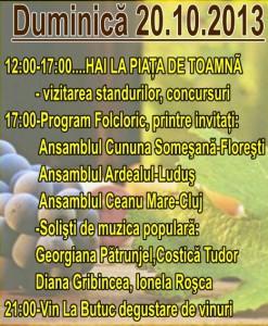 Program duminica