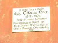 OCTAVIAN FODOR