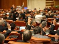 vot parlament voluntariatul