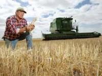Atenţie, fermieri: a început plata subvenţiilor acordate pe suprafaţă