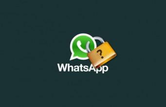 whatsapp fara windows phone