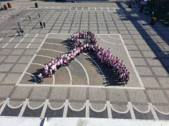Marșul Fundițelor Roz